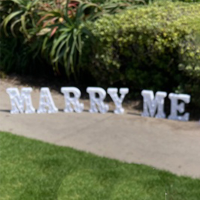 Marry Me Sign Small
